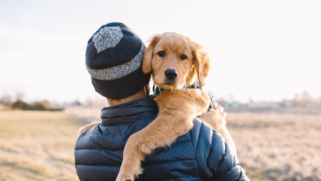 person outside, facing away from the camera and holding a golden retriever puppy over his shoulder