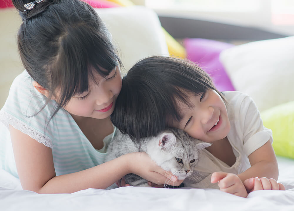 children cuddling a cat
