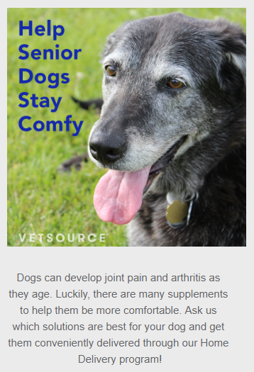 "Screenshot of a sample social media post from Vetsource's Marketing Toolkit for veterinary practices. Image is a photo of a happy older dog with text reading ""Help Senior Dogs Stay Comfy"" and text below reads ""Dogs can develop joint pain and arthritis as they age. Luckily, there are many supplements to help them be more comfortable. Ask us which solutions are best for your dog and get them conveniently delivered through our Home Delivery program!"""