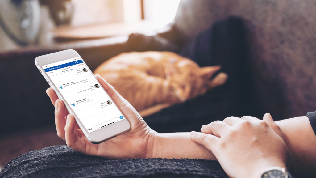 person holding smartphone displaying chats in Vet2Pet app, with a sleeping orange cat looking cozy in the background
